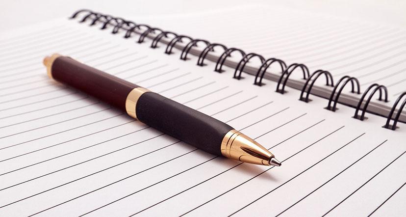Comptes rendus et procès-verbaux des Conseils municipaux