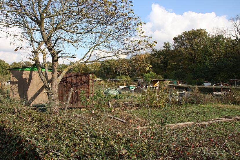 Jardin Bois Cerdon